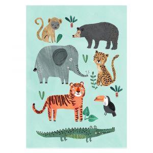 Petit Monkey Wild Animals Poster