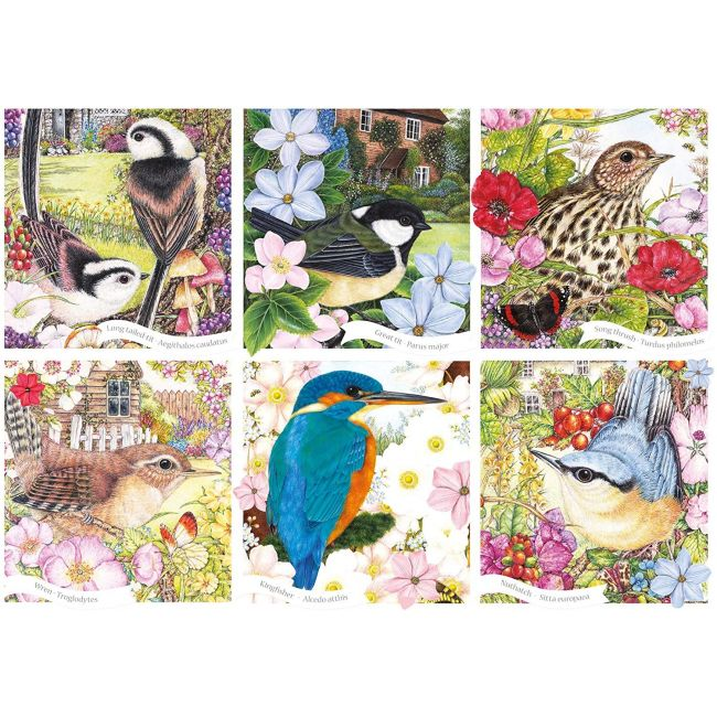 Otter House - Jigsaw Rectangular - Rspb - Garden Birds (L)