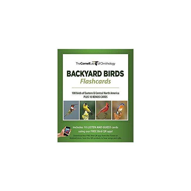 B Jain Publishers - Animal And Bird Flash Card