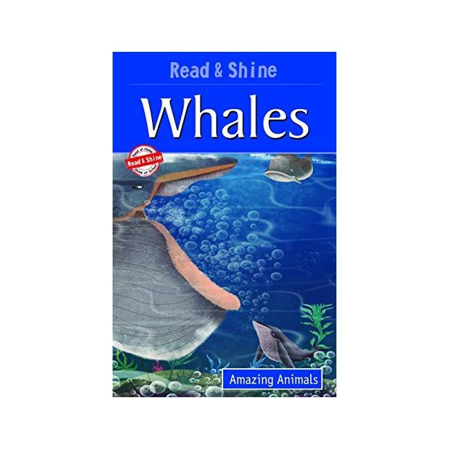 B Jain Publishers - Read And Shine Whale