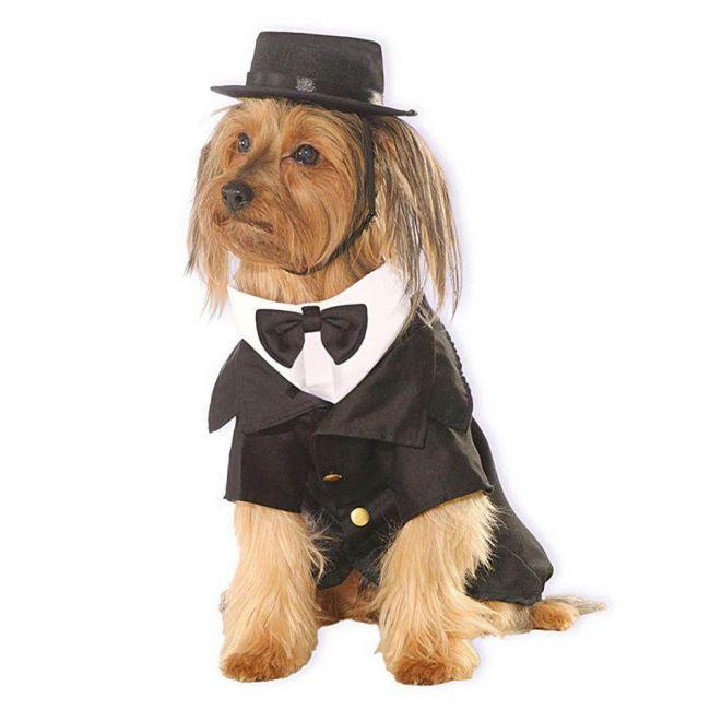 Rubie's - Around The World Dapper Dog Pet Costume