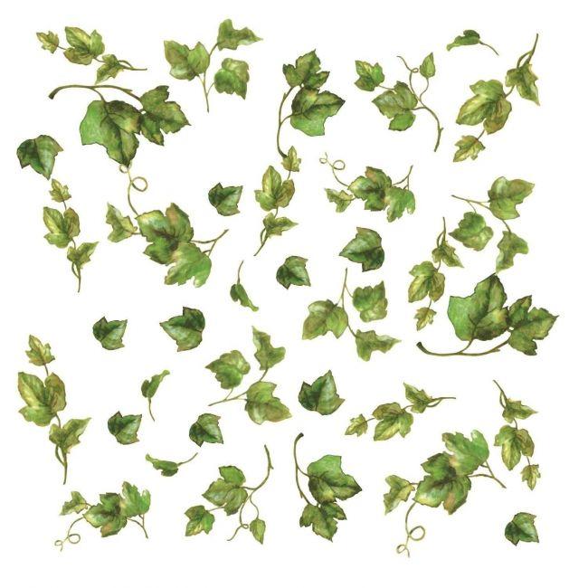 Room Mates Decals Evergreen Ivy Appliques