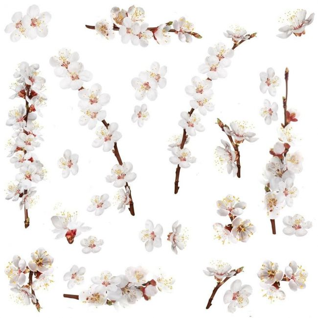 Room mates Dogwood Branch Wall Decals